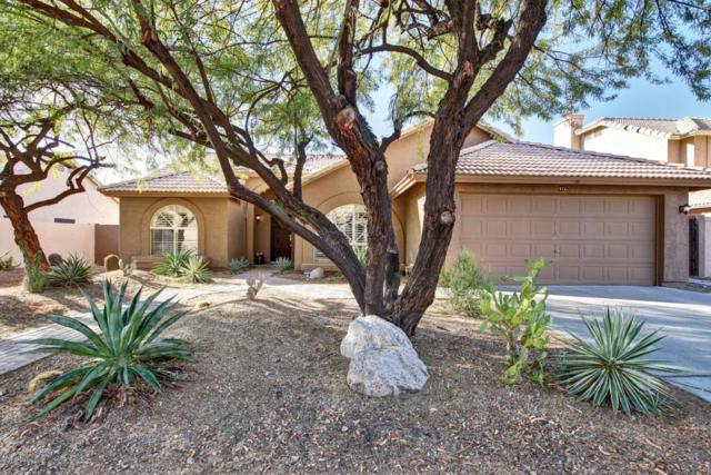 913 E Verbena Drive, Phoenix, AZ 85048 (MLS #5711330) :: Lux Home Group at  Keller Williams Realty Phoenix