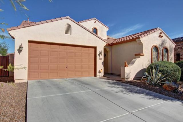 29623 N 70TH Avenue, Peoria, AZ 85383 (MLS #5711378) :: Ashley & Associates