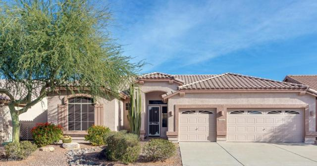 7402 E Desert Spoon Lane, Gold Canyon, AZ 85118 (MLS #5711429) :: Yost Realty Group at RE/MAX Casa Grande