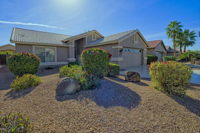 15373 W Merrell Street, Goodyear, AZ 85395 (MLS #5711434) :: The Daniel Montez Real Estate Group