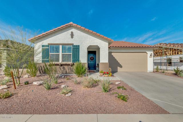 14992 S 181st Lane, Goodyear, AZ 85338 (MLS #5711443) :: The Daniel Montez Real Estate Group