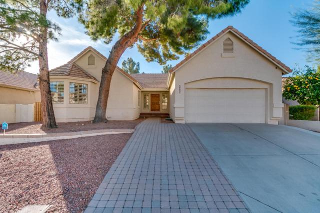 6915 W Oraibi Drive, Glendale, AZ 85308 (MLS #5711461) :: Lux Home Group at  Keller Williams Realty Phoenix