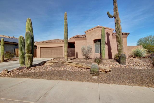 18590 W Mcneil Street, Goodyear, AZ 85338 (MLS #5711581) :: Ashley & Associates