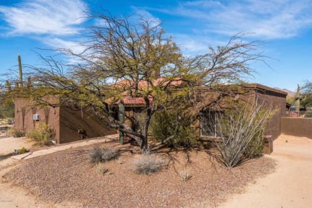 6006 E Wildcat Drive, Cave Creek, AZ 85331 (MLS #5711700) :: The Daniel Montez Real Estate Group