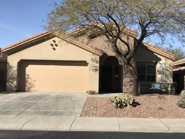 41212 N Prestancia Drive, Anthem, AZ 85086 (MLS #5711788) :: The Daniel Montez Real Estate Group