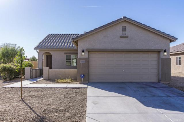 19299 W Morning Glory Drive, Buckeye, AZ 85326 (MLS #5711798) :: The AZ Performance Realty Team
