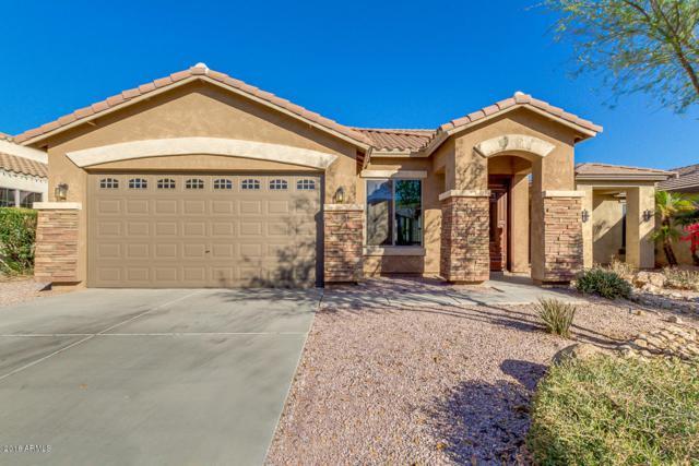 3664 W White Canyon Road, Queen Creek, AZ 85142 (MLS #5711813) :: The Pete Dijkstra Team