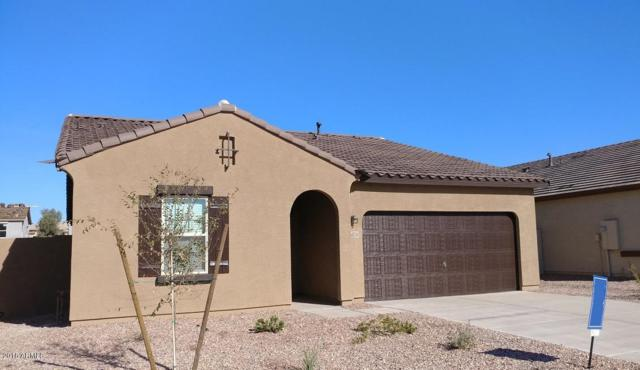 36850 W Nola Way, Maricopa, AZ 85138 (MLS #5711867) :: The Daniel Montez Real Estate Group