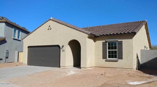 36812 W Mattino Lane, Maricopa, AZ 85138 (MLS #5711869) :: The Daniel Montez Real Estate Group