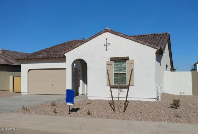 36898 W Nola Way, Maricopa, AZ 85138 (MLS #5711889) :: The Daniel Montez Real Estate Group