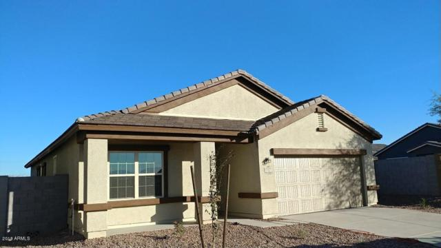 17127 N Angelico Drive, Maricopa, AZ 85138 (MLS #5711891) :: The Daniel Montez Real Estate Group