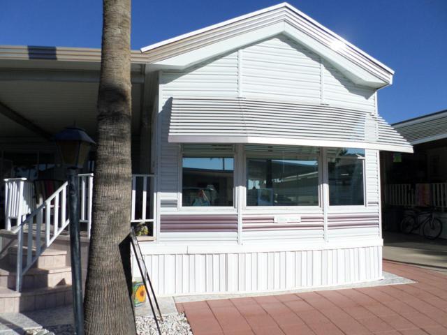 3710 S Goldfield Road #871, Apache Junction, AZ 85119 (MLS #5711933) :: Ashley & Associates