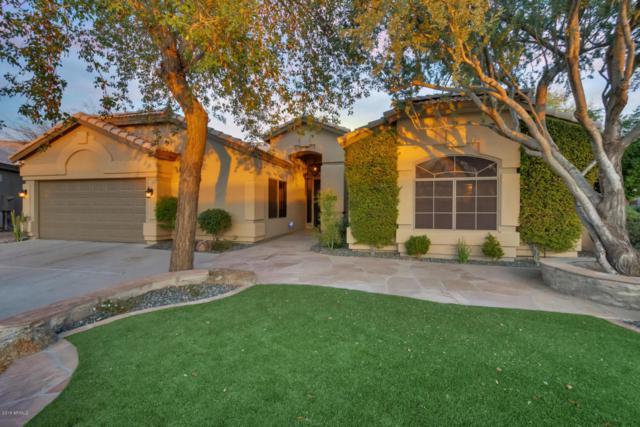 4330 E Morning Vista Lane, Cave Creek, AZ 85331 (MLS #5711960) :: The Daniel Montez Real Estate Group