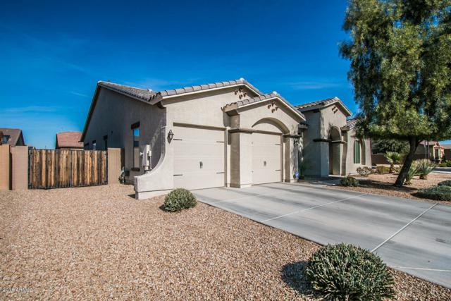 16174 W Mohave Street, Goodyear, AZ 85338 (MLS #5712016) :: The Daniel Montez Real Estate Group
