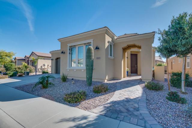 1645 E Verde Boulevard, San Tan Valley, AZ 85140 (MLS #5712021) :: The Daniel Montez Real Estate Group
