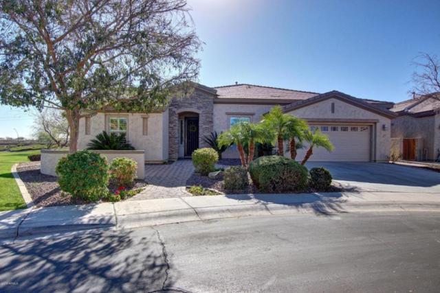 4181 E Blue Spruce Lane, Gilbert, AZ 85298 (MLS #5712027) :: RE/MAX Excalibur