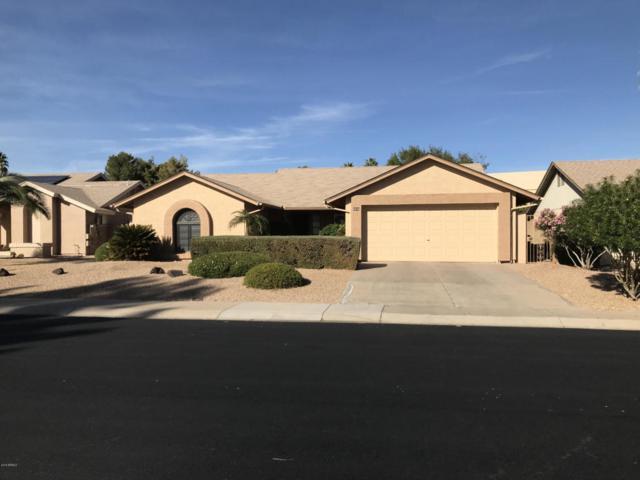 9626 W Taro Lane, Peoria, AZ 85382 (MLS #5712060) :: The Worth Group
