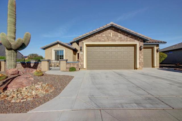 27152 W Yukon Circle, Buckeye, AZ 85396 (MLS #5712082) :: Desert Home Premier