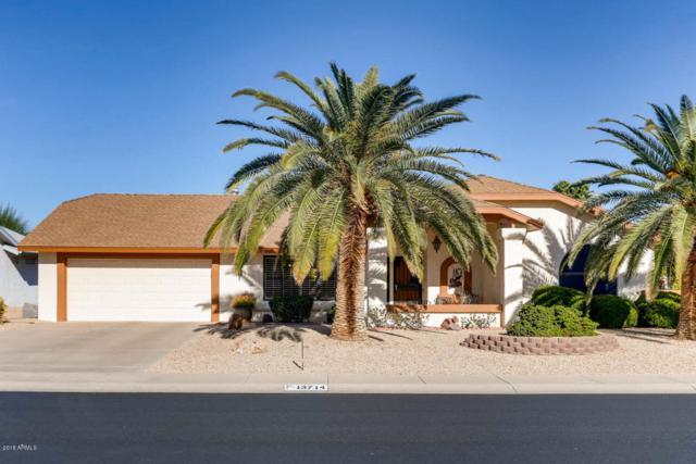 13714 W Franciscan Drive, Sun City West, AZ 85375 (MLS #5712119) :: The Daniel Montez Real Estate Group