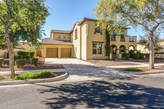 20913 W Cora Vista, Buckeye, AZ 85396 (MLS #5712130) :: Desert Home Premier