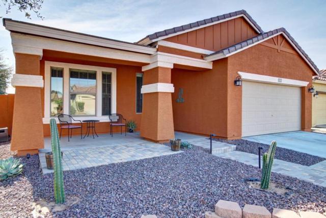 11751 W Patrick Lane, Sun City, AZ 85373 (MLS #5712161) :: Ashley & Associates