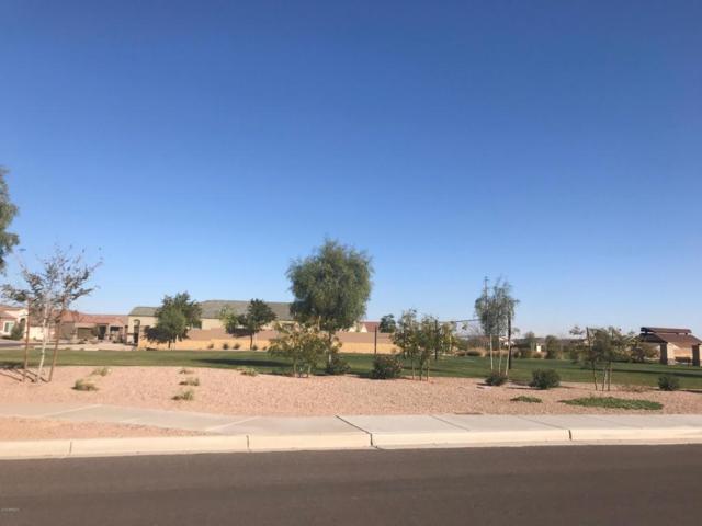 41274 W James Lane, Maricopa, AZ 85138 (MLS #5712166) :: Yost Realty Group at RE/MAX Casa Grande