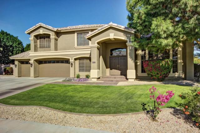 8146 W Camino De Oro, Peoria, AZ 85383 (MLS #5712168) :: Santizo Realty Group