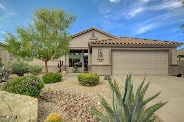 6798 E Hacienda La Noria Lane, Gold Canyon, AZ 85118 (MLS #5712194) :: The Pete Dijkstra Team