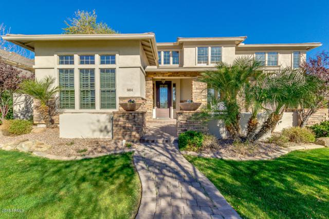 3054 E Comstock Drive, Gilbert, AZ 85296 (MLS #5712206) :: The Wehner Group