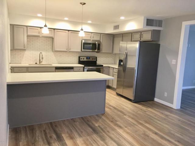 12627 N 25TH Avenue, Phoenix, AZ 85029 (MLS #5712211) :: The Worth Group