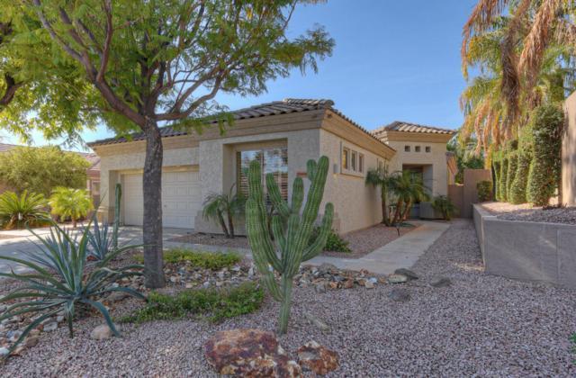 20938 N 69TH Drive, Glendale, AZ 85308 (MLS #5712217) :: The Worth Group