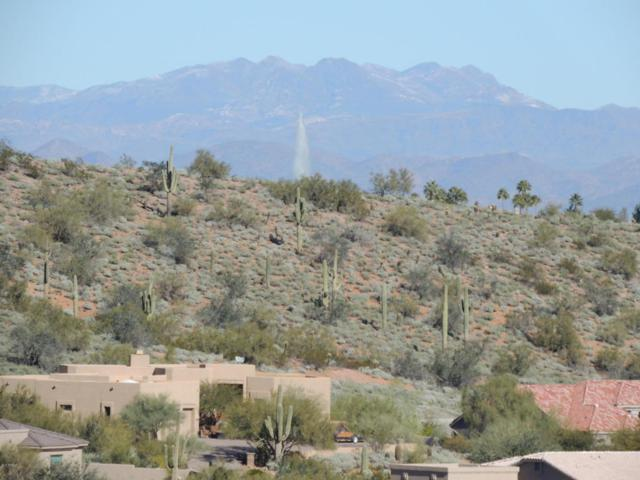 16231 E Powderhorn Drive, Fountain Hills, AZ 85268 (MLS #5712244) :: The Wehner Group