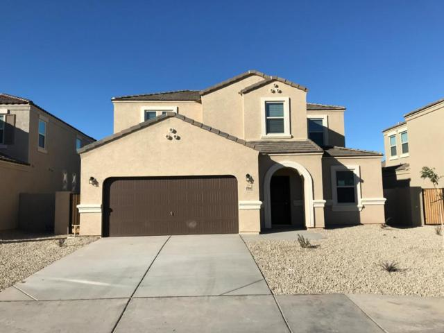 17044 N Rosa Drive, Maricopa, AZ 85138 (MLS #5712256) :: Occasio Realty