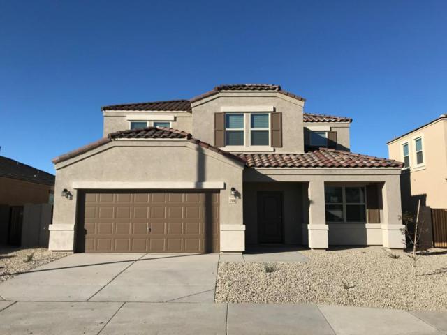 17030 N Rosa Drive, Maricopa, AZ 85138 (MLS #5712262) :: Occasio Realty