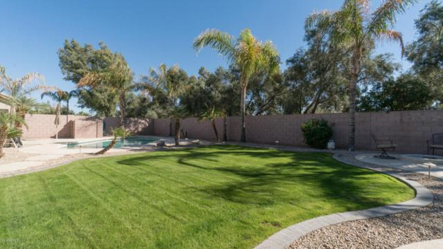 3671 S Vista Place, Chandler, AZ 85248 (MLS #5712266) :: The Wehner Group