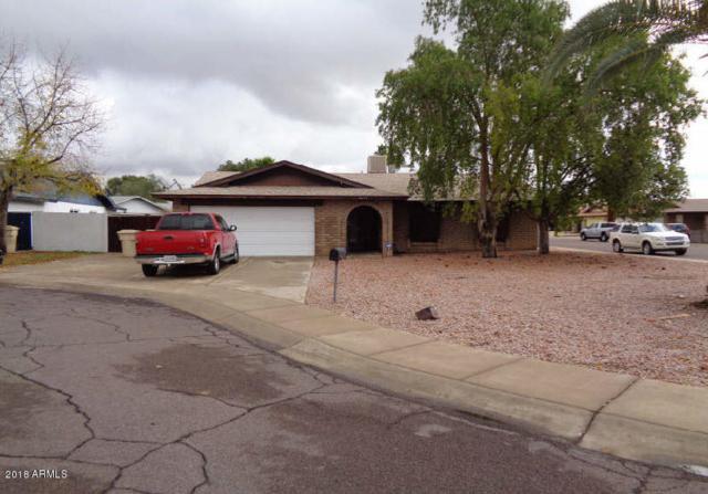 6604 W Mercer Lane, Glendale, AZ 85304 (MLS #5712274) :: The Worth Group