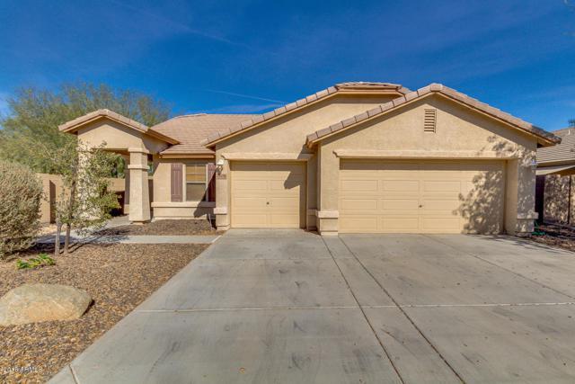 25576 W Primrose Lane, Buckeye, AZ 85326 (MLS #5712310) :: Yost Realty Group at RE/MAX Casa Grande