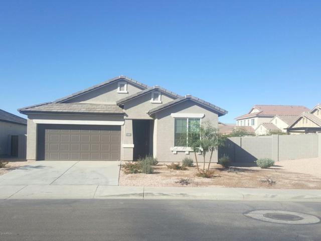 2610 S 116TH Avenue, Avondale, AZ 85323 (MLS #5712323) :: Lifestyle Partners Team