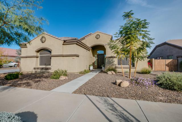 21462 E Russet Road, Queen Creek, AZ 85142 (MLS #5712325) :: The Pete Dijkstra Team