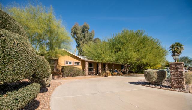 716 W Flynn Lane, Phoenix, AZ 85013 (MLS #5712331) :: The Worth Group
