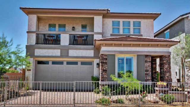 16316 N 2nd Drive, Phoenix, AZ 85023 (MLS #5712339) :: Santizo Realty Group