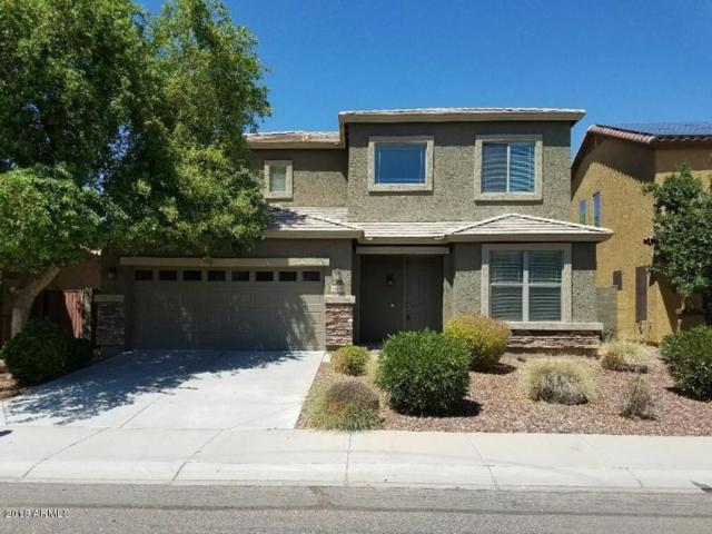 11814 W Villa Hermosa Lane, Sun City, AZ 85373 (MLS #5712362) :: Santizo Realty Group