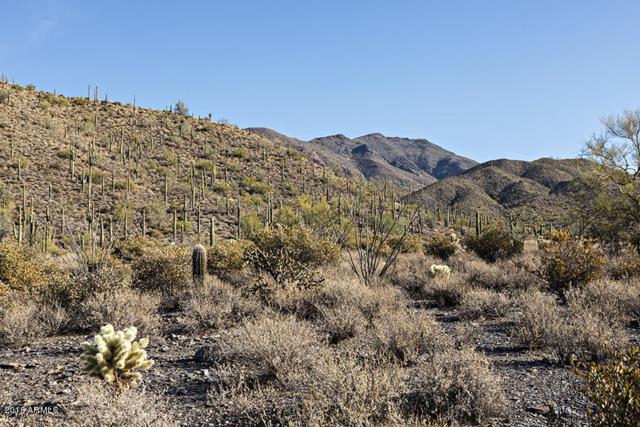 42000 N Fleming Springs Road, Cave Creek, AZ 85331 (MLS #5712365) :: Lifestyle Partners Team