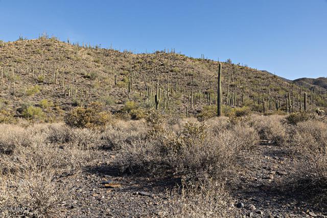 42000 N Fleming Springs Road, Cave Creek, AZ 85331 (MLS #5712368) :: Lifestyle Partners Team