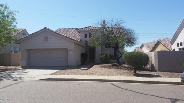 31038 N 42ND Place, Cave Creek, AZ 85331 (MLS #5712374) :: Lifestyle Partners Team