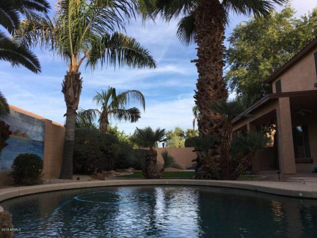 120 E Frances Lane, Gilbert, AZ 85295 (MLS #5712394) :: Lifestyle Partners Team