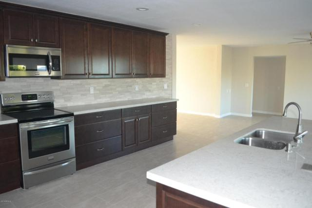 13235 W Keystone Drive, Sun City West, AZ 85375 (MLS #5712395) :: Desert Home Premier