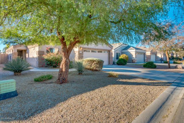 1373 E Anastasia Street, San Tan Valley, AZ 85140 (MLS #5712406) :: The Pete Dijkstra Team