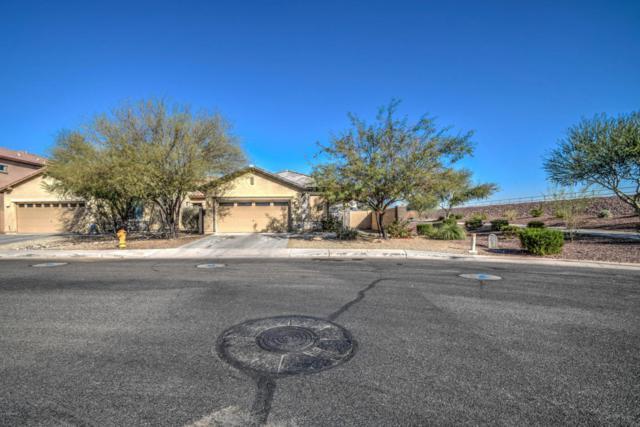 998 E Corrall Street, Avondale, AZ 85323 (MLS #5712415) :: Lifestyle Partners Team