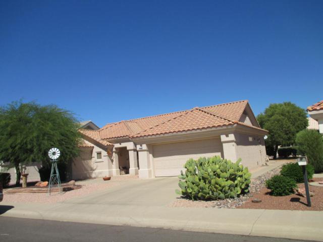 14208 W Rico Drive, Sun City West, AZ 85375 (MLS #5712455) :: Desert Home Premier